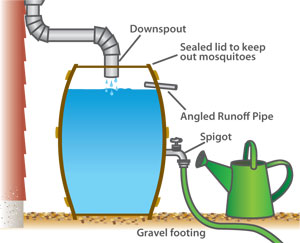 rain barrel diagram
